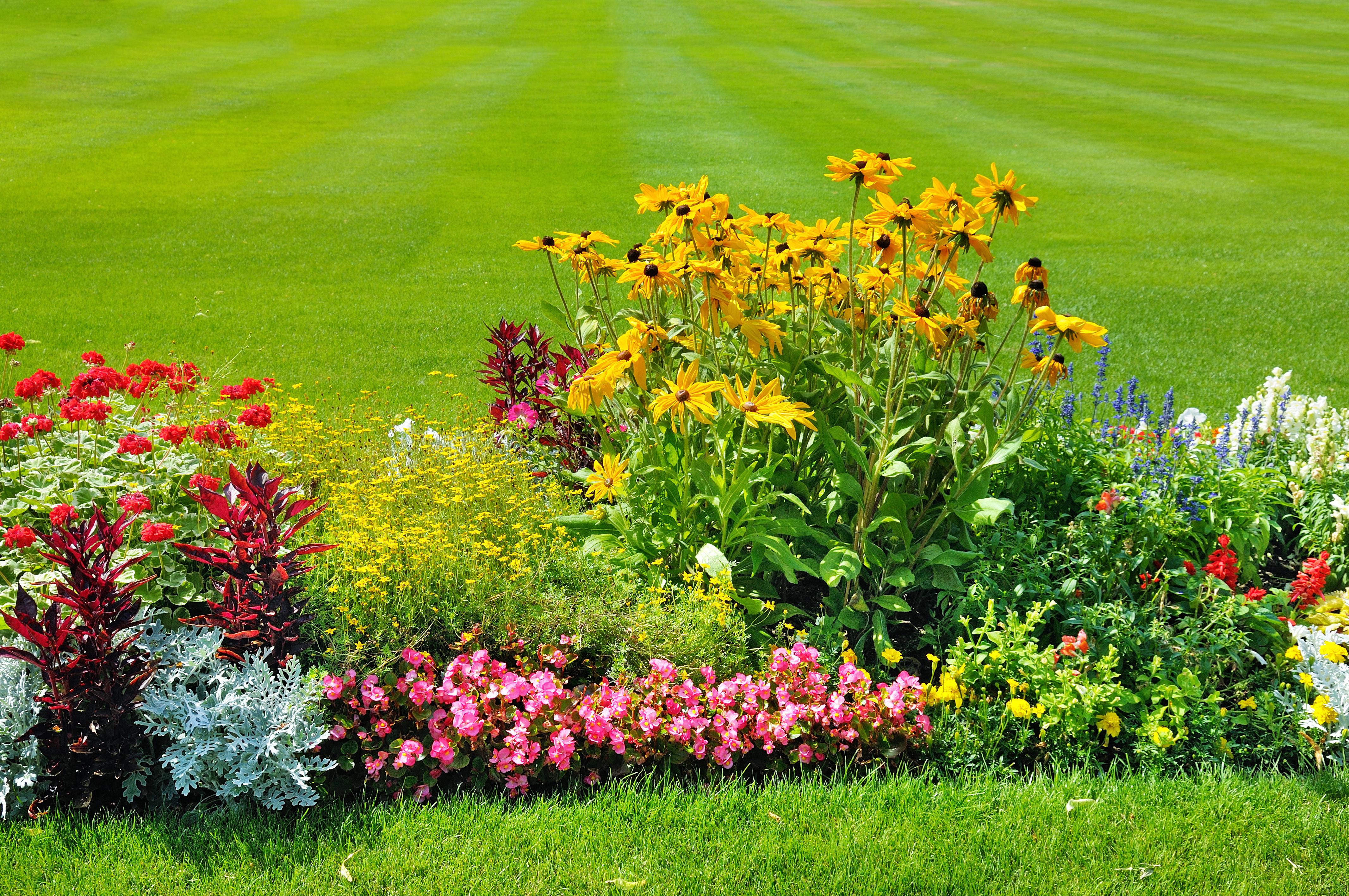 Aménagement D Un Parterre De Fleurs création de massifs fleuris et aménagement extérieur