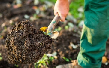 Un paysagiste pour l'entretien des parcs et jardins à Montech
